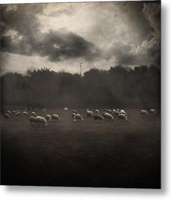 October Insight Metal Print by Taylan Apukovska