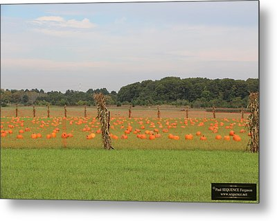 October Is Here 1 Metal Print by Paul SEQUENCE Ferguson             sequence dot net