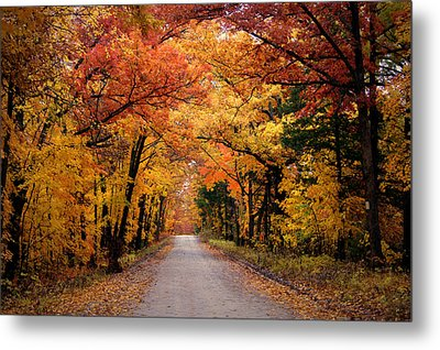 October Road Metal Print by Cricket Hackmann