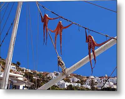 Octopus Trio Hanging In Mykonos Greece Metal Print