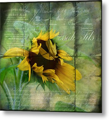 Ode To Summer Metal Print by Kathleen Holley