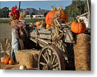 Metal Print featuring the photograph Off To Market by Michael Gordon