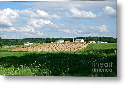 Ohio Amish Farm Metal Print by Lila Fisher-Wenzel