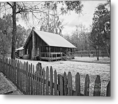 Okefenokee Home Metal Print by Southern Photo