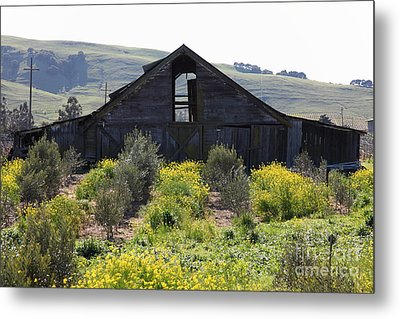Old Barn In Sonoma California 5d22236 Metal Print by Wingsdomain Art and Photography