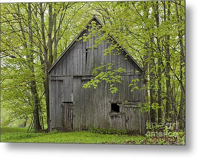 Old Barn In Spring Woods Metal Print by Alan L Graham
