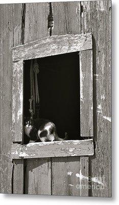 Old Barn Window Metal Print