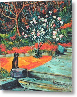 Old Bear Cat And Blooming Magnolia Tree Metal Print by Asha Carolyn Young