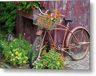 Old Bicycle With Flower Basket Next Metal Print by Panoramic Images