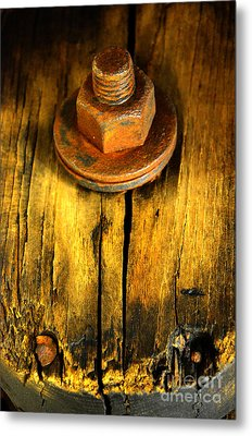 Old Bolt Metal Print by Newel Hunter