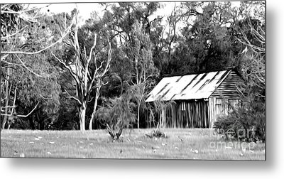 Old Bush Shed Metal Print by Phill Petrovic