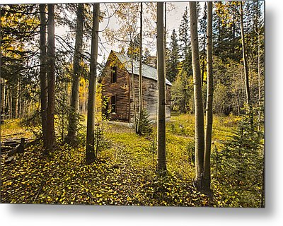 Old Cabin In Iron Town Colorado Metal Print by James Steele