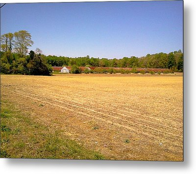 Old Chicken House On A Farm Field Metal Print