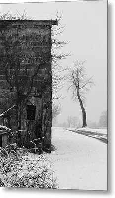 Old Door And Tree Metal Print by William Jobes