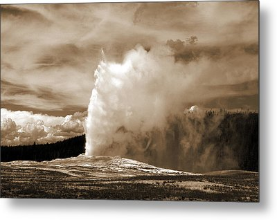 Old Faithful In Yellowstone Metal Print