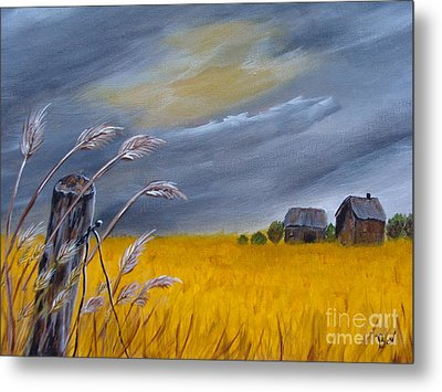 Old Farm 1 Metal Print by Beverly Livingstone