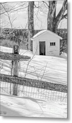 Long Cold Winter Metal Print