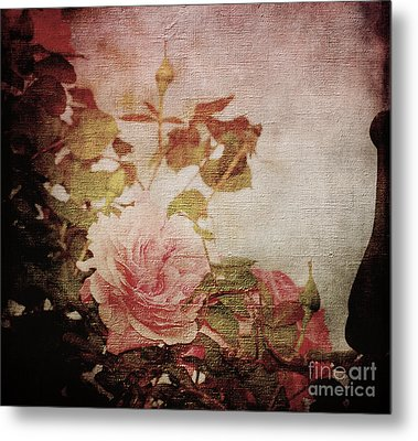 Old Fashion Rose Metal Print