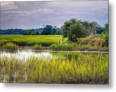 Old Fence Line At The Whale Branch Metal Print