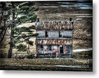 Old Home Place With Birds In Front Yard Metal Print by Dan Friend