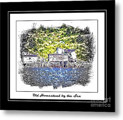 Old Homestead By The Sea Metal Print by Barbara Griffin
