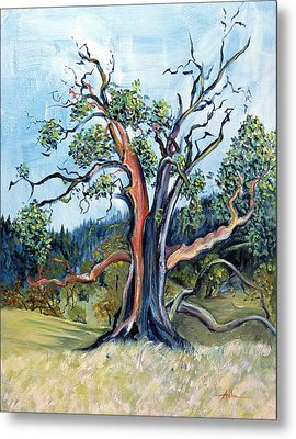 Metal Print featuring the painting Old Madrone Tree In November  by Asha Carolyn Young