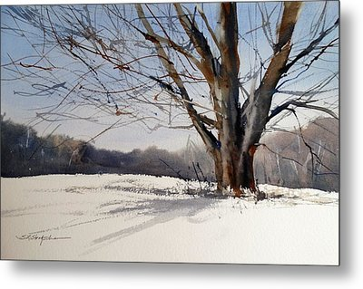 Old Oak White Road Metal Print