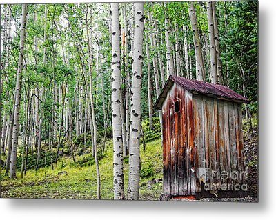 Old Outhouse Among Aspens Metal Print by Lincoln Rogers