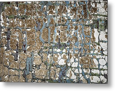 Old Painted Wood Abstract No.5 Metal Print