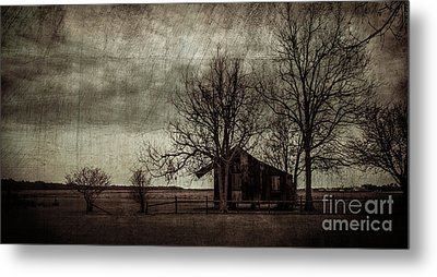 Old Plantation Metal Print by Perry Webster