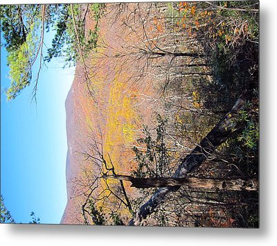 Old Rag Hiking Trail - 121215 Metal Print by DC Photographer
