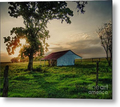 Metal Print featuring the photograph Old Shed by Savannah Gibbs