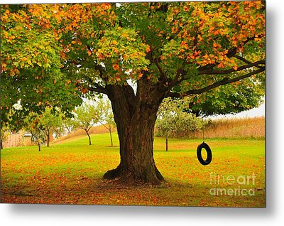 Old Tire Swing Metal Print by Terri Gostola