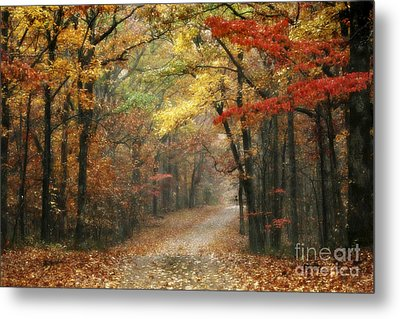 Old Trace Fall - Along The Natchez Trace In Tennessee Metal Print