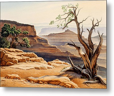 Old Tree At The Canyon Metal Print by Paul Krapf