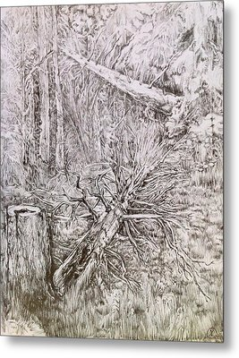 Metal Print featuring the drawing Old Tree by Iya Carson