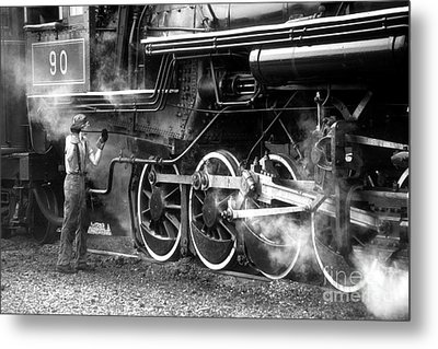 Metal Print featuring the photograph Ole #90 by ELDavis Photography