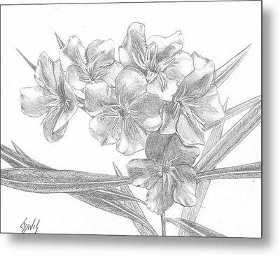 Oleander Metal Print by Lew Davis
