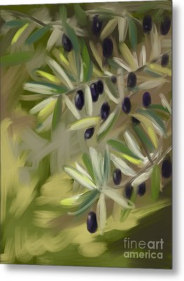 Olive Tree Metal Print by Go Van Kampen