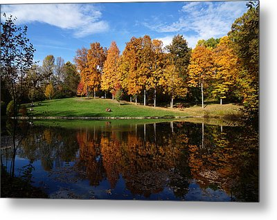 Oliver Winery 2014 Metal Print by Chuck Johnson