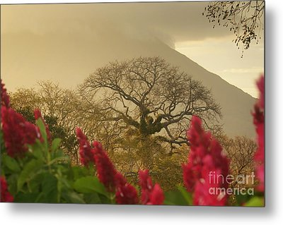 Metal Print featuring the photograph Ometepe Island 2 by Rudi Prott