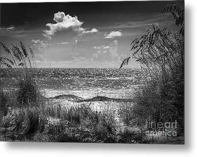 On A Clear Day-bw Metal Print