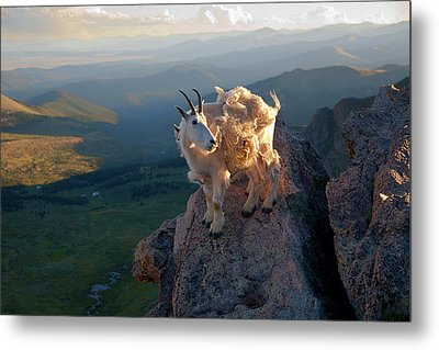 Metal Print featuring the photograph On A Clear Day by Jim Garrison