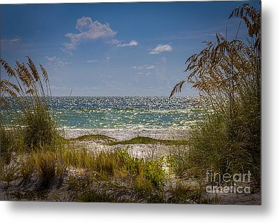 On A Clear Day Metal Print by Marvin Spates