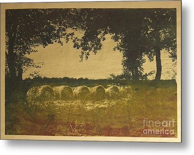 On A Farm In France Metal Print