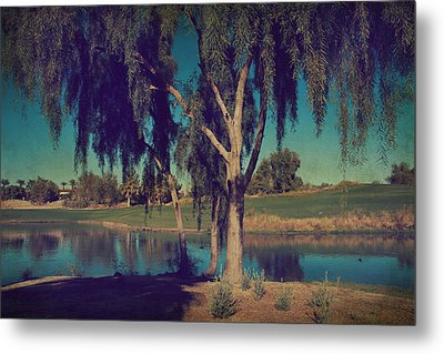 On A Lazy Afternoon Metal Print by Laurie Search