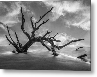 On A Misty Morning In Black And White Metal Print by Debra and Dave Vanderlaan