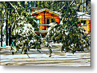 On A Winter Day Metal Print by Steve Harrington