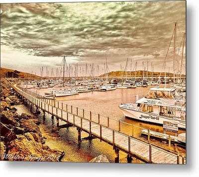 Metal Print featuring the photograph On Any Day by Wallaroo Images