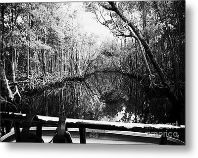 On Board An Airboat Ride Through A Mangrove Jungle In Everglades City Florida Everglades Usa  Metal Print by Joe Fox